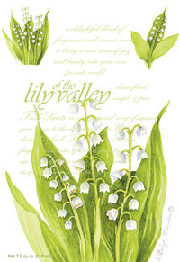 "Duftsachet Large ""Lily of the Valley"" 115ml, WillowBrook"