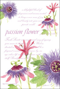 """Passion Flower"" Duftsachet Large, WillowBrook"
